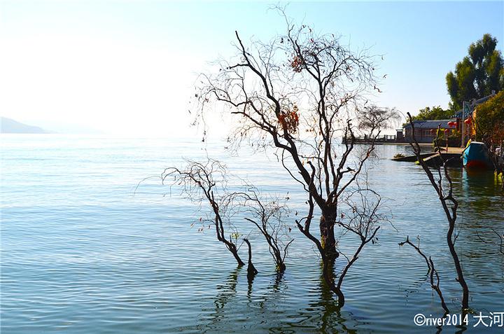 """""""...小片沙滩以及许多拍照的设施,总之是一个非常惬意的小岛,如果你在双廊有半天时间,建议来这里看一看_南诏风情岛""""的评论图片"""