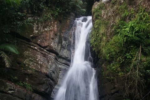 厄尔尼诺云雀国家森林公园旅游景点攻略图