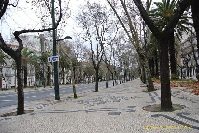 自由大道图片