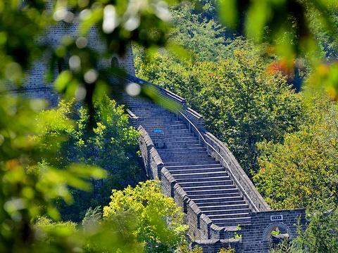 虎山长城旅游景点图片