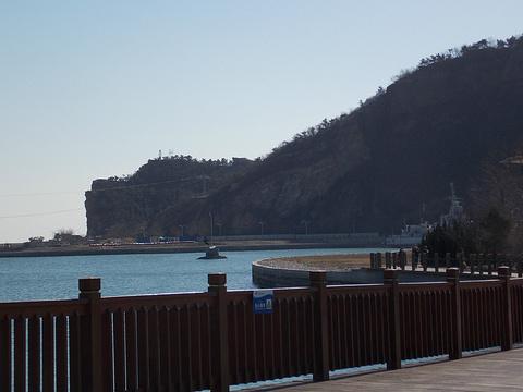 老虎滩海洋公园旅游景点攻略图