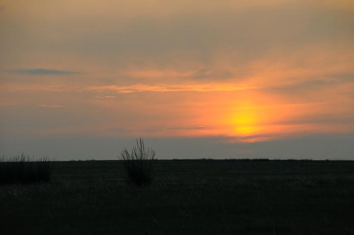 我看见了美丽月亮_2020路上我无意中往窗外一望,发现太阳从云层中钻了出来,落在