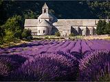 阿维尼翁旅游景点攻略图片