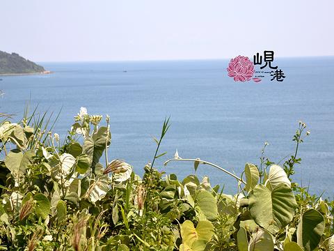 山茶半岛旅游景点图片