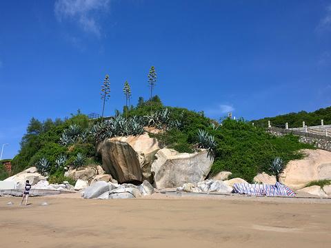 鼓浪屿环岛路旅游景点图片