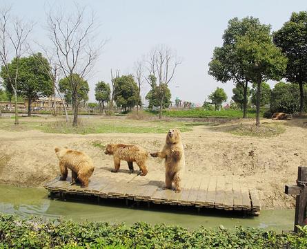 淹城野生动物世界旅游景点攻略图
