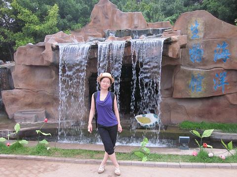 鸽子窝公园旅游景点攻略图