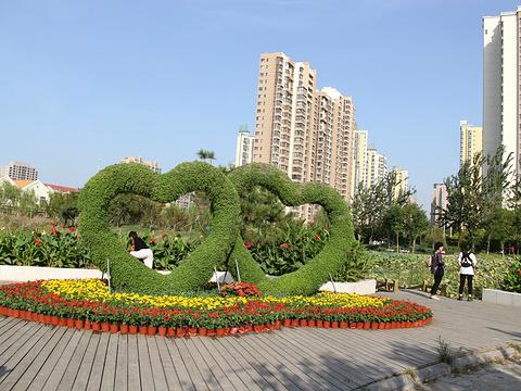 南翠屏公园旅游景点图片
