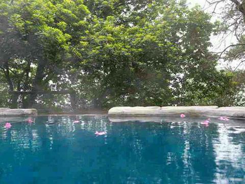 天邑森林温泉景区旅游景点图片