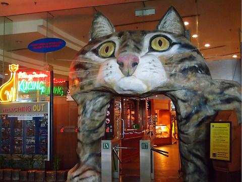 古晋猫咪博物馆旅游景点图片