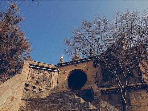 甘谷大象山旅游景点图片