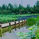 三圣花乡旅游区