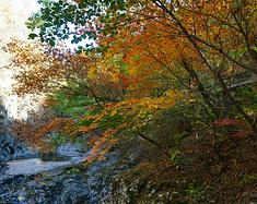 秋季郊游好去处--辽宁本溪关门山