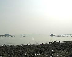 青岛,海的味道——鲜!