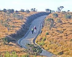 徒步斯里兰卡霍顿平原国家公园