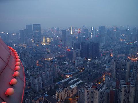 天府熊猫塔旅游景点图片
