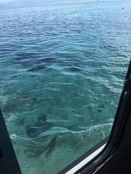 蓝梦岛旅游景点攻略图
