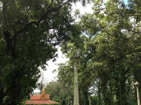 寺庙俱乐部旅游景点图片