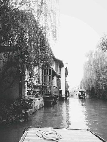 """""""而且人超级少,随便你怎么拍照,而且无人的街道在清晨特别有感觉,还有花海那里超级美,就是龙形田那..._乌镇""""的评论图片"""