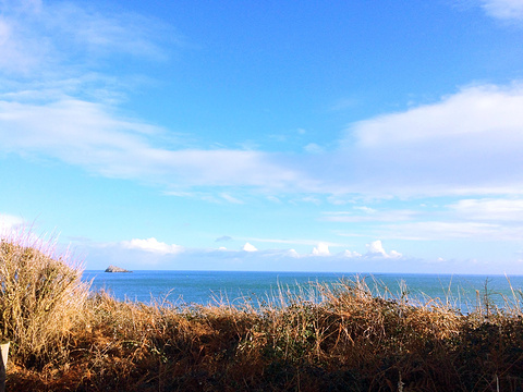 达特茅斯旅游景点图片