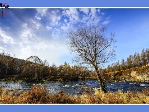 双台河口自然保护区旅游景点图片