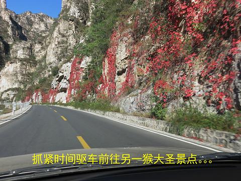 花果山生态园旅游景点攻略图