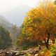 石门国家森林公园