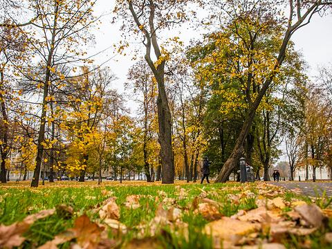 维尔纽斯大学旅游景点图片