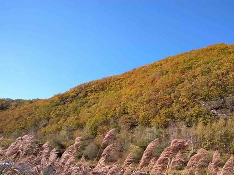 花楸谷旅游景点图片