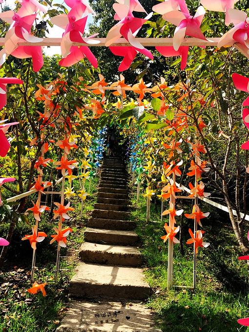 清境小瑞士花园图片