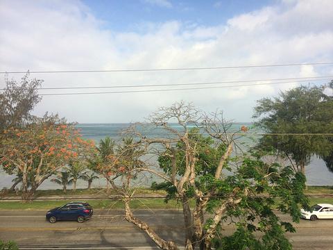 海滨大道旅游景点图片
