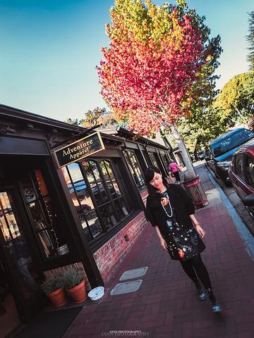 """""""卡梅尔所有的精华部分就在一条主街上,大概花个1个钟头足可逛遍,再停留喝杯咖啡,享受这个童话小镇_卡梅尔小镇""""的评论图片"""