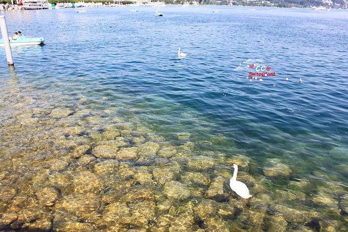 卢塞恩湖图片