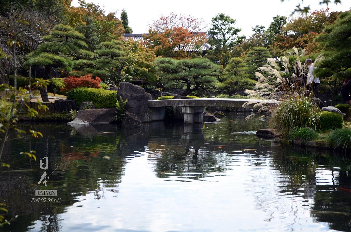 朦胧的晨曦与雾霭——再次遇见你之日本