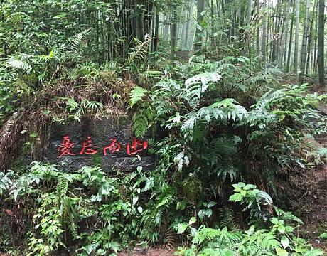 蜀南竹海旅游景点攻略图