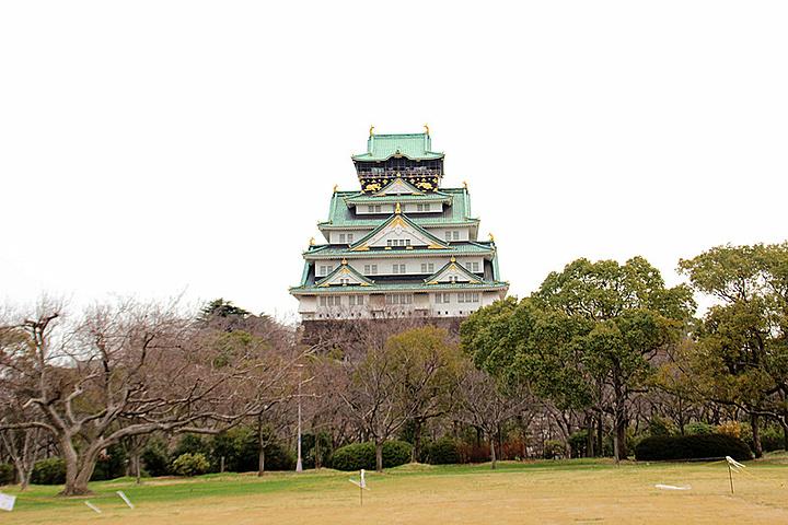 """""""这里有很多鸽子,一点都不怕人_大阪城公园""""的评论图片"""