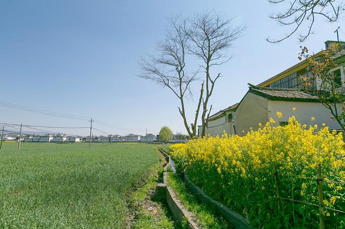 桃源村图片