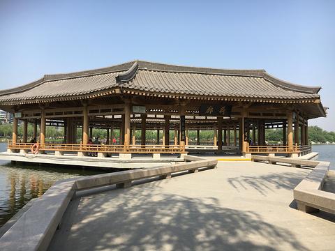 曲江池遗址公园的图片