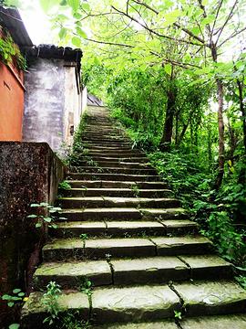 龙凤山公园旅游景点攻略图