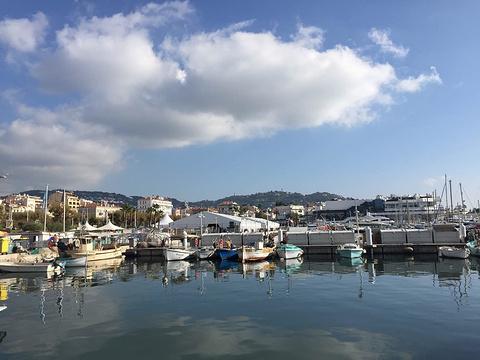 老港口旅游景点图片