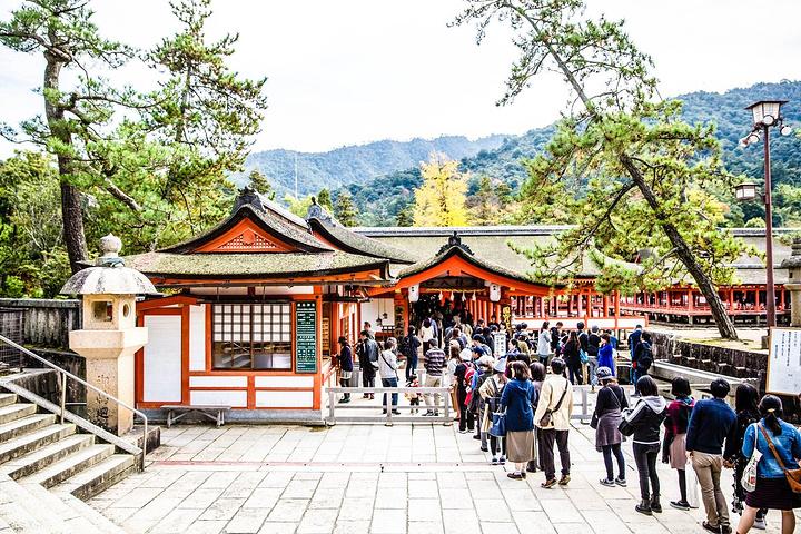 """""""严岛神社是宫岛上具有代表性的胜景,它建于..._严岛神社""""的评论图片"""