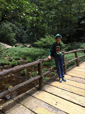"""""""不过最好不要选在秋天游览,沿途就只能看到枯枝林木了。小路间每到一个景点都会有地图,保管不会迷路_张家界国家森林公园""""的评论图片"""