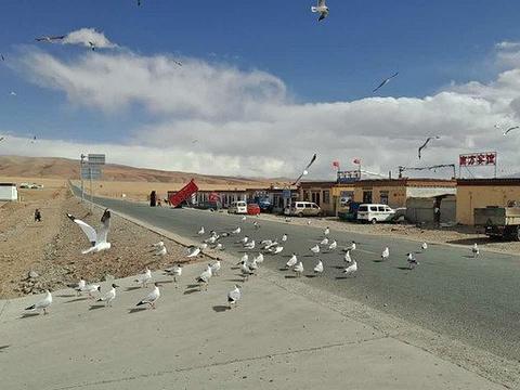 西藏自治区普兰县霍尔乡旅游景点图片