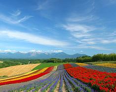 在日本的六个春秋,带你纵贯全日本