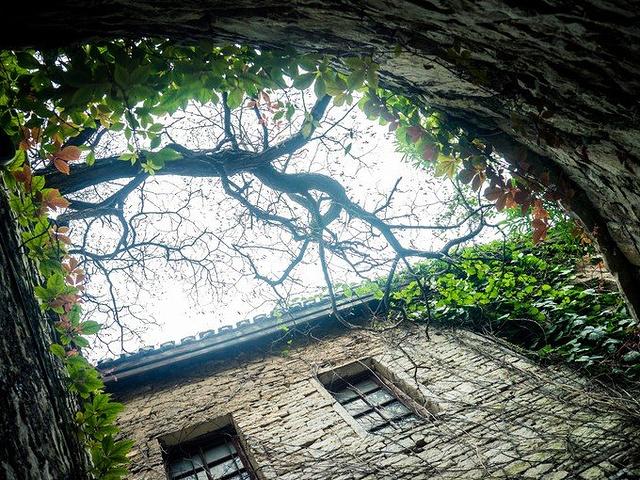 """""""这个巷子作为一个参观点从而得到了保留原来风格的机会。找到住的以后我们就开始逛了一些屯堡里面的旧址_天龙屯堡""""的评论图片"""