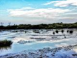 坦桑尼亚旅游景点攻略图片