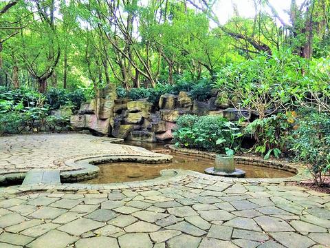 莲花山公园旅游景点攻略图