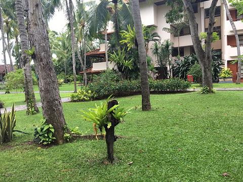 巴厘岛泡泡水上乐园旅游景点攻略图