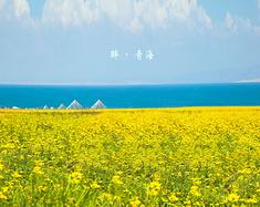醉•青海——八日自驾游青海大环线
