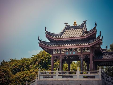 丰渚园旅游景点图片